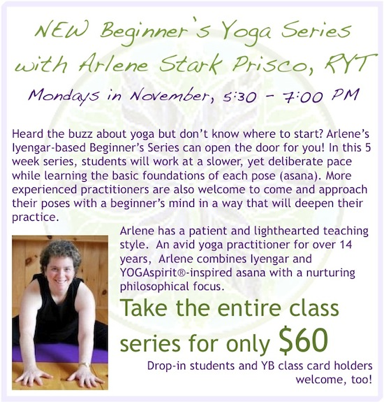 arlene-beginners-series-flyer
